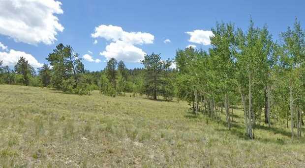 10157 Ranch Rd - Photo 12