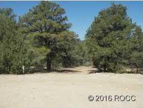 947 High Peaks Ranch Road - Photo 6