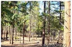 30240 Eagles Ridge - Photo 2