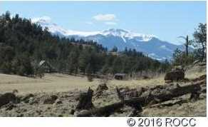 920 Pack Saddle Road - Photo 1