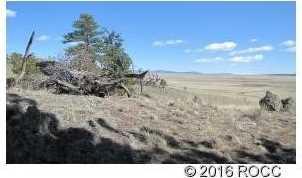 920 Pack Saddle Road - Photo 2