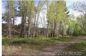 17403 Reserve Drive - Photo 6