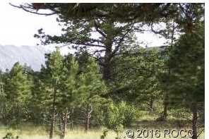 30531 Mountainside - Photo 4