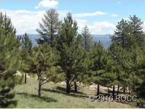 30269 Eagles Ridge - Photo 6