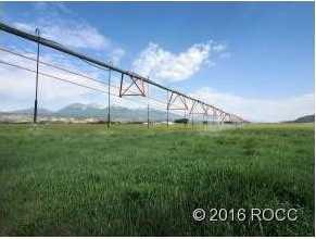 10748 County Road 155 - Photo 1