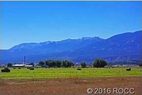 10748 County Road 155 - Photo 4