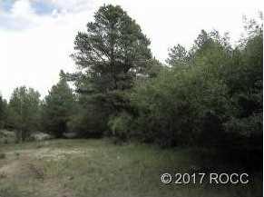 Cr 290 - Photo 4