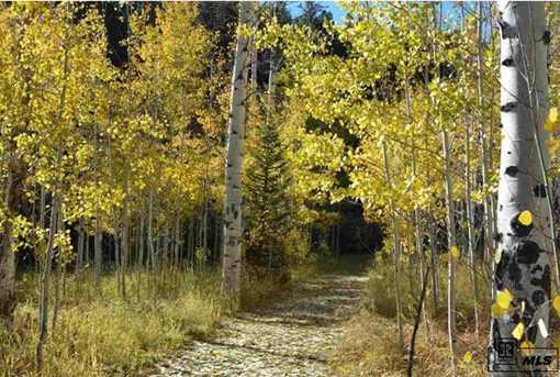Tbd Colt Trail - Photo 1