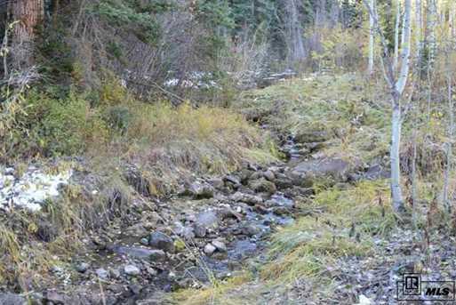 Tbd Colt Trail - Photo 8