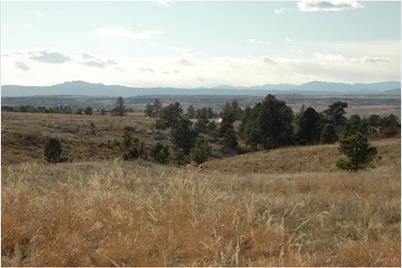 8620 Preservation Trail - Photo 1
