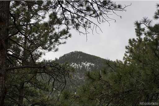 9955 South Turkey Creek Road - Photo 1