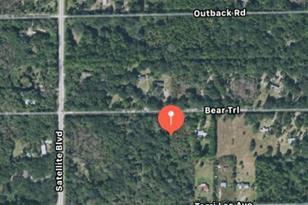 Bear (Brevard Cty) Trail - Photo 1