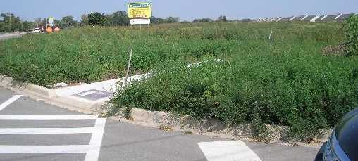 Lot 3 Route 23 Highway - Photo 1