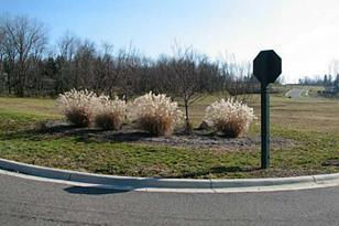 405 Buena Vista Drive - Photo 1
