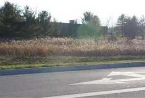 8000 Columbus Lancaster Nw Road - Photo 4