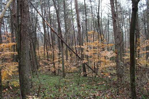0 Old Camp Rd - Photo 6