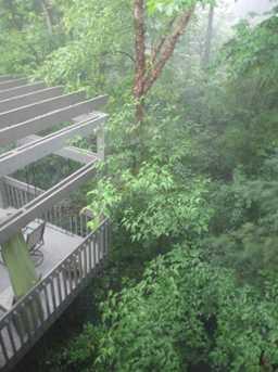 292 Bristol Woods Court - Photo 50