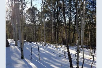 741 Timber Ridge Road - Photo 1