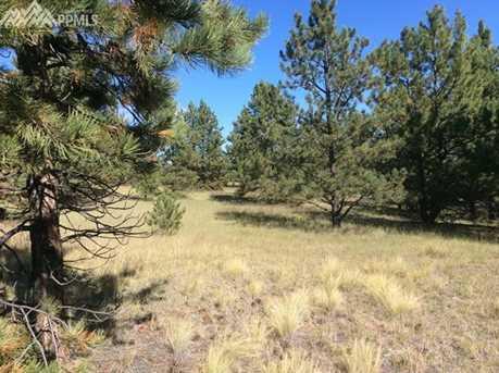 693 Black Mesa Circle - Photo 6