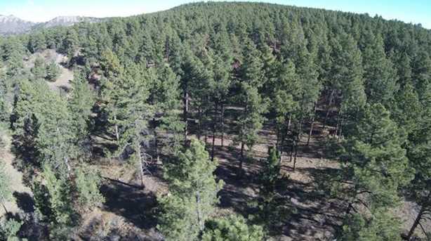 1947-1821 Elk View Rd - Photo 24