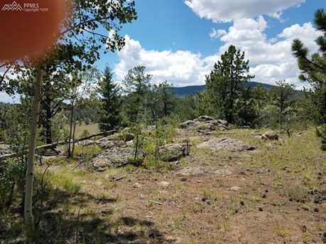 938 Castle Mountain Drive - Photo 12