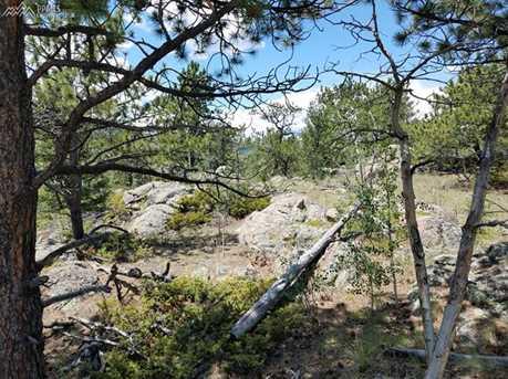 938 Castle Mountain Drive - Photo 6