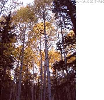 159 Aspen Way - Photo 12