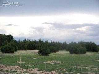 108 Tumbleweed Trail - Photo 2