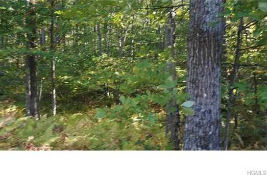 37 Trillium Trail - Photo 30