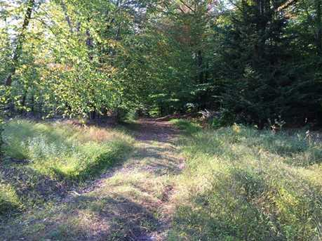 Dryer Rd Trail 29 - Photo 28