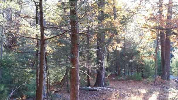 Pine Kill Road - Photo 6