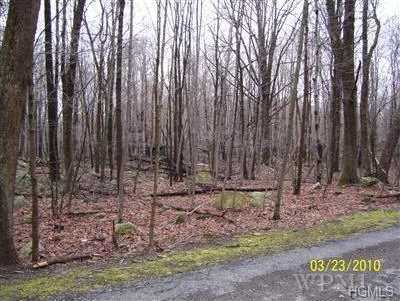 4 Miller Hill Woods Road - Photo 1