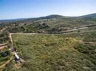 20753 N Elfin Forest Road A - Photo 4