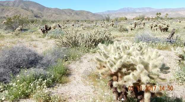 658 Indian Head Ranch 42 - Photo 12