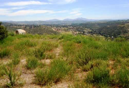 8.77 Acres Ramona Highlands 1 - Photo 8
