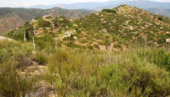 8.77 Acres Ramona Highlands 1 - Photo 14