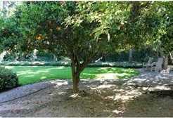 13331 Fallen Leaf Rd. - Photo 1