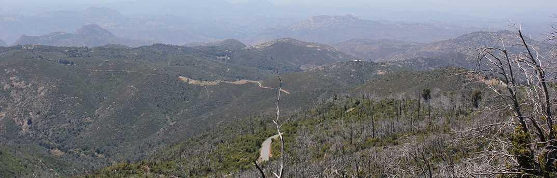 2.5 Acres N Peak Way 10 - Photo 20