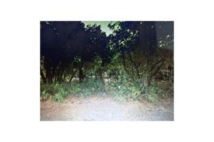 17497 Granby Ave - Photo 1