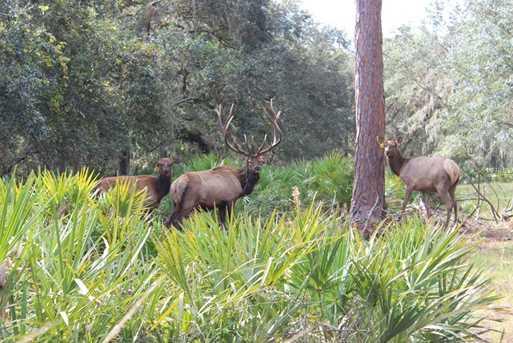2875 Elk Hammock Way - Photo 2