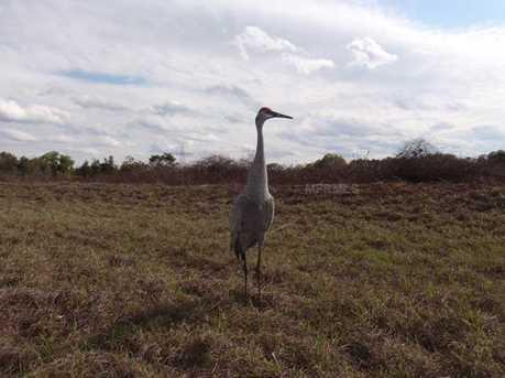 Marsh View Ct - Photo 24