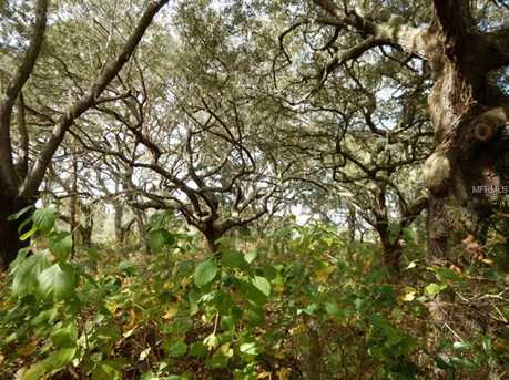 Silent Ridge Drive - Photo 4