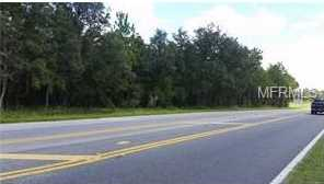 E Highway 25 (Ocala Rd) - Photo 6