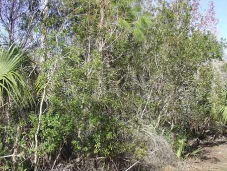 Canvasback Trail - Photo 2