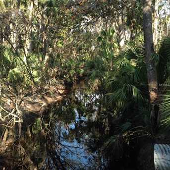 Branch Crossing - Photo 4