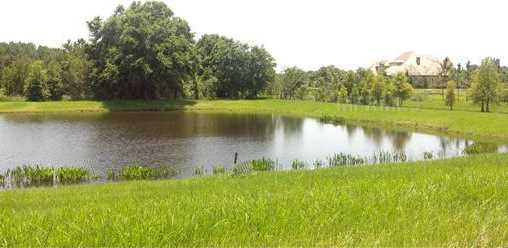 5 Stonelake Ranch Lot 160 Boulevard - Photo 8