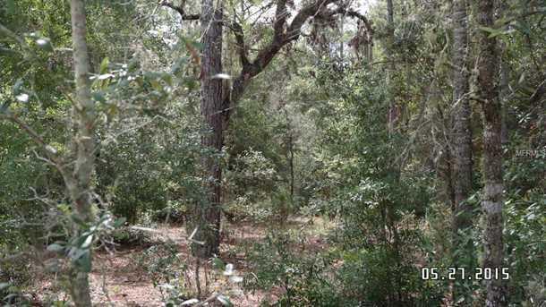 11900 S Pine Oak Terrace - Photo 4
