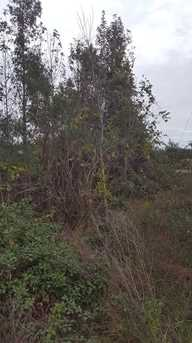 Cooter Pond Road - Photo 2