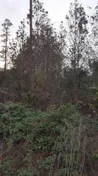 Cooter Pond Road - Photo 8