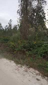 Cooter Pond Road - Photo 4